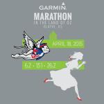 2015 Garmin Marathon T-Shirt Front